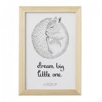 Obrazek ze śpiącą wiewiórką